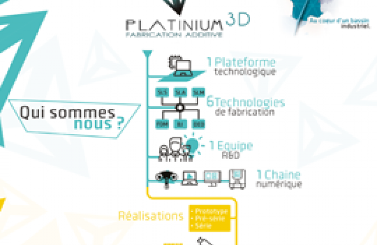 Platinium 3D : l'organisation