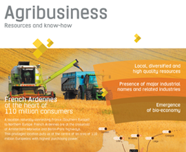 Agribusiness: resources and know-how